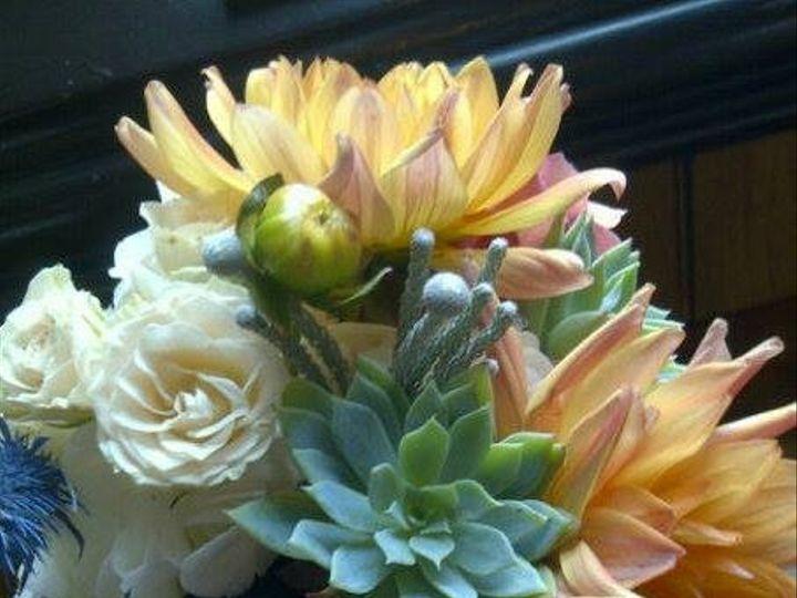 Tmx 1408209495936 10291746102037666097079894245385712506875017n Butler wedding florist