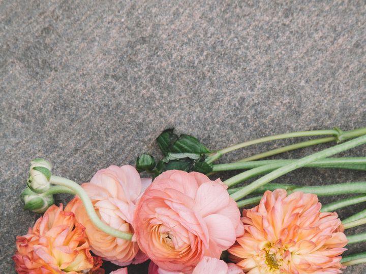 Tmx 1450141864917 Mg0311 Brooklyn, NY wedding photography