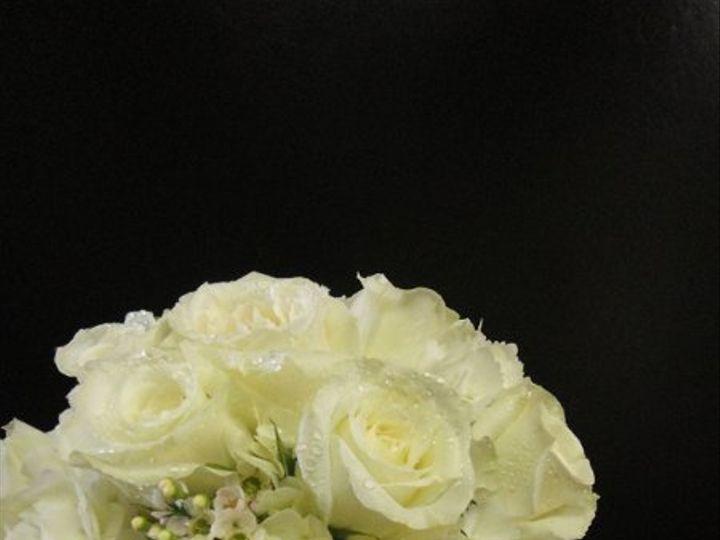 Tmx 1324170983788 DSC00325 Hightstown wedding florist
