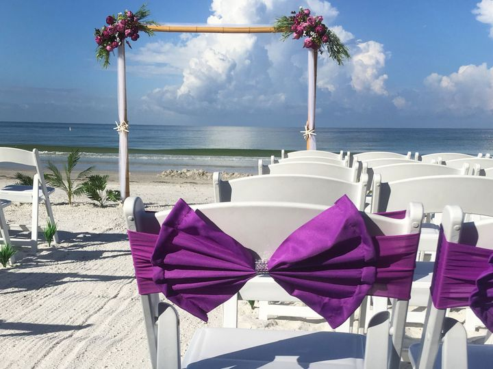 Tmx 1538486961 3485f5c32b0161ce 1538486958 Bbb60463d70b9d71 1538486938841 8 IMG 6263 Copy Saint Petersburg, FL wedding planner