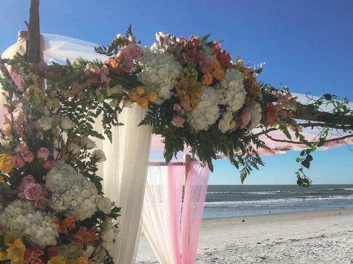 Tmx Img 7758 51 1015002 V1 Saint Petersburg, FL wedding planner