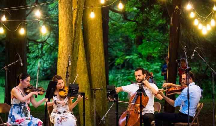 Elegance String Quartet