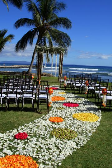 Polka Dot Aisle in tropical colors