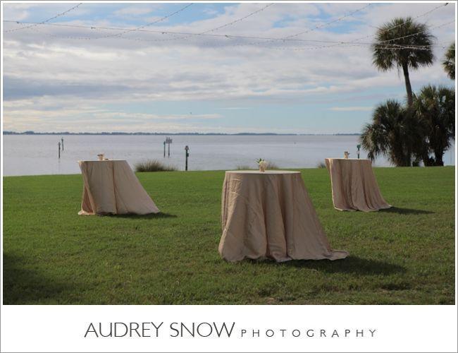 Tmx 1516308483 Bdf2b9ccfd8ee36c 1516308442 7603ac385ff69af4 1516308440074 6 Audreysnow Photogr Sarasota, Florida wedding rental