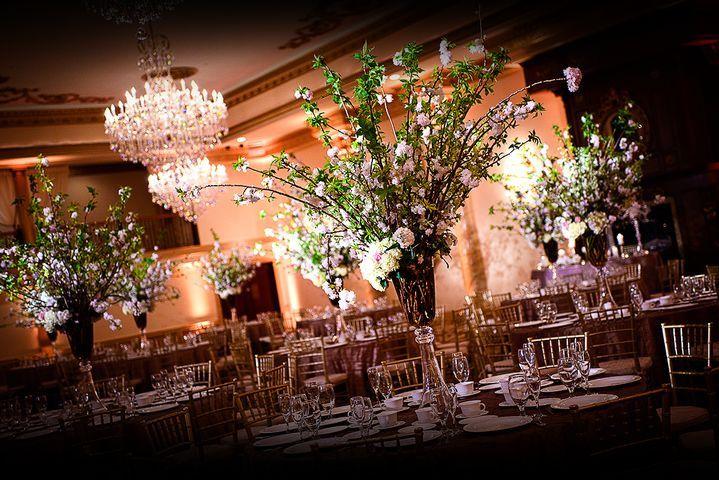 Tmx Dd7b9e06 468e 495c Bcd1 Ada5ed53f692rs 719 480 51 604602 Sewell, NJ wedding photography