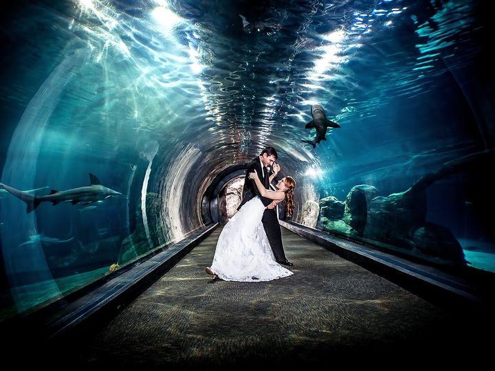 Tmx Img 1016 51 604602 158522854021382 Sewell, NJ wedding photography