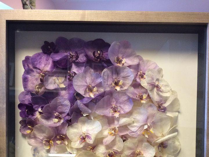 Tmx 1450288530622 Img0574 Audubon, NJ wedding florist