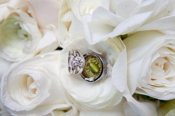 Tmx 1308857295256 JensenNuveen0050 Upper Black Eddy, PA wedding florist