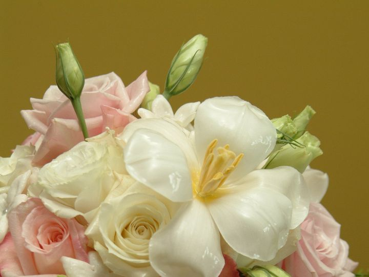 Tmx 1383938057966 Hmf01 Upper Black Eddy, PA wedding florist