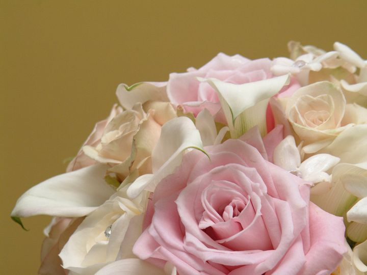 Tmx 1383938613580 Hmf02 Upper Black Eddy, PA wedding florist