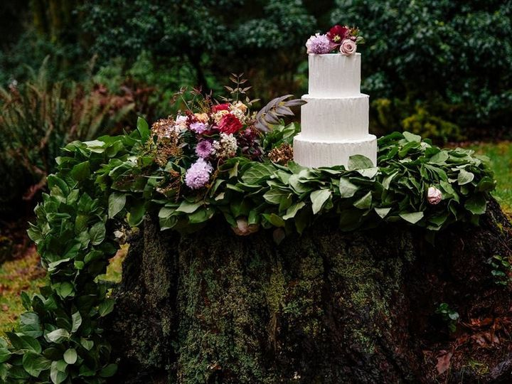Tmx 1455043539308 Stephanie Professional Seattle, WA wedding cake