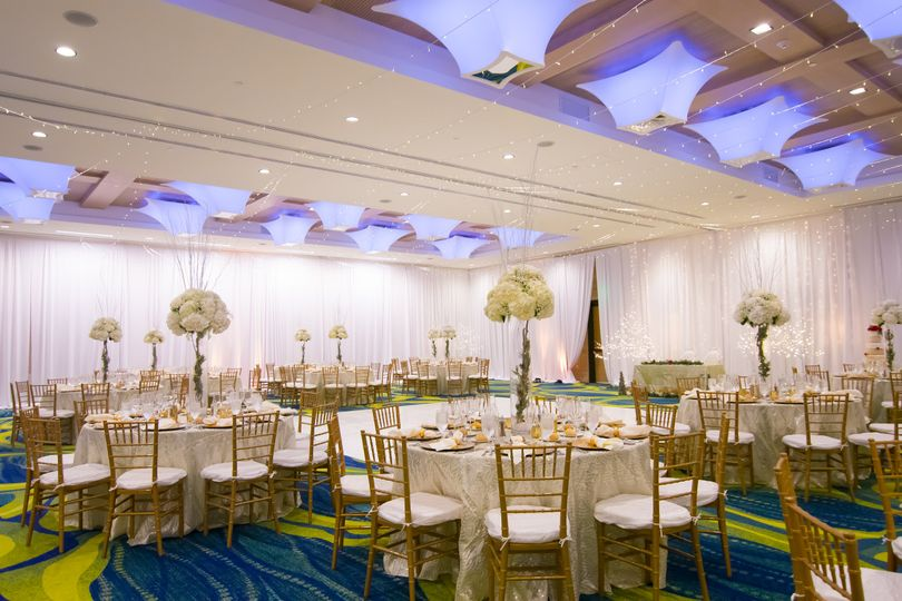 Sea turtle ballroom