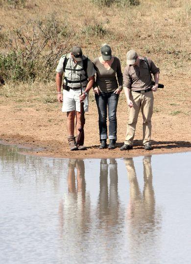 13 tanda tula walking safaris