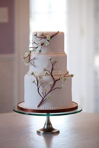 Tree branch inspired cake