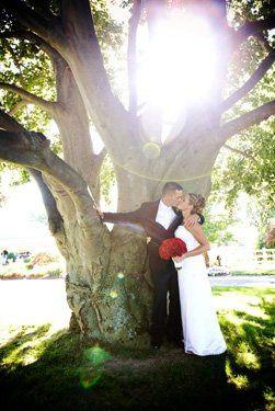 Tmx 1210355057826 0017 Boston wedding photography