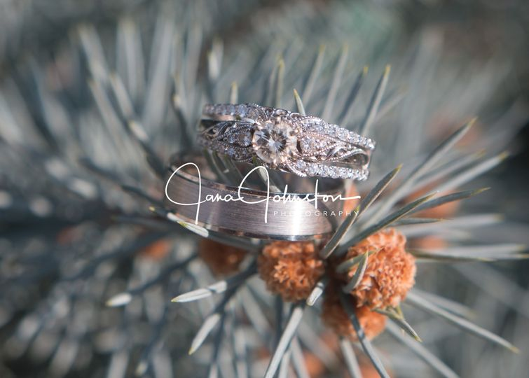 Ring in Pine