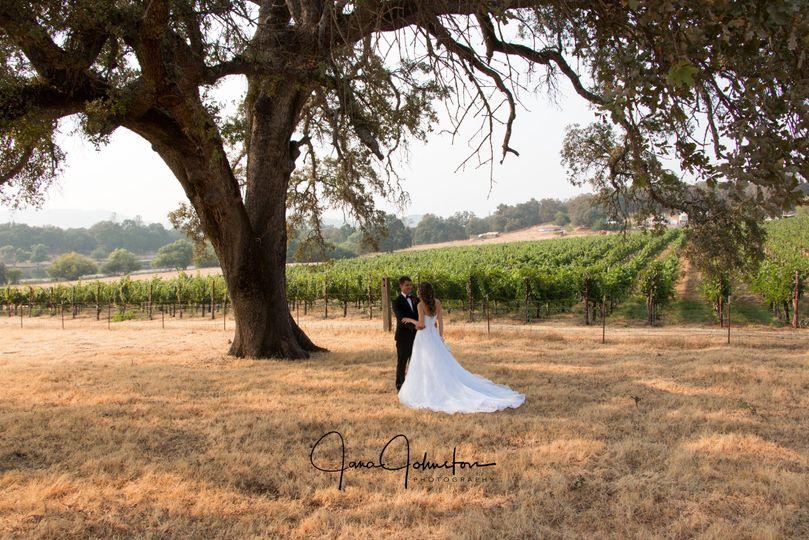 Wedding old Oak