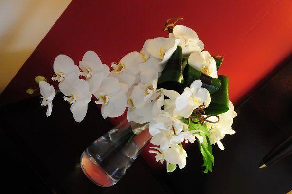 Tmx 1336508992689 ST041 Columbus, Ohio wedding florist