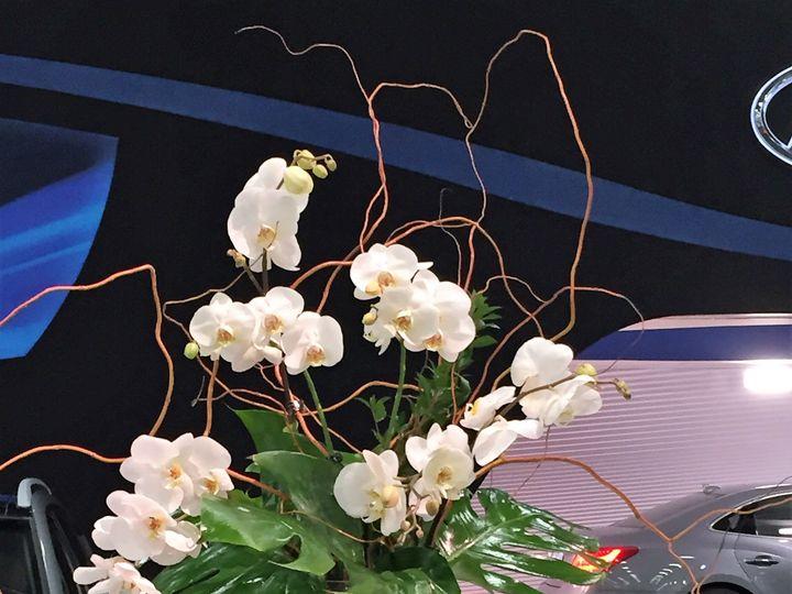 Tmx 1517416609 637d2e8ddd91505b 1517416607 8c2c43d497aaa4cd 1517416599510 15 IMG 1304  2  Columbus, Ohio wedding florist