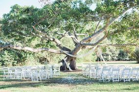 Petal & Co. Events and Floral Design