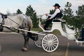 Moonlight Carriage Company LLC