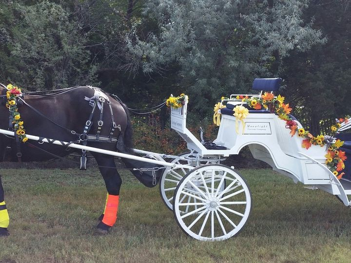 Tmx 1488829655332 Fall Nunn, Colorado wedding transportation