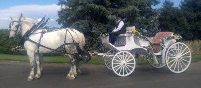 Tmx 1488829741348 Nedted1 Nunn, Colorado wedding transportation
