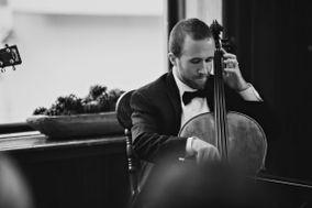 Metropolitan Chamber Strings