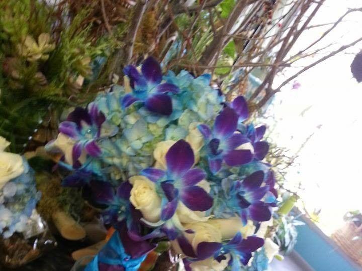 Tmx 1424113824081 10247291749261998451282363243717n Tulsa, Oklahoma wedding florist