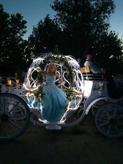 All of our carriages light up beautifully for your evening events.