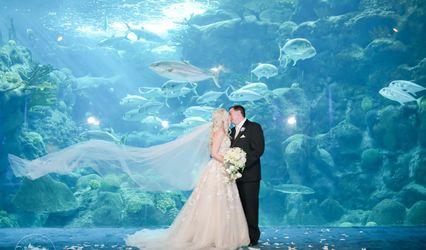The Florida Aquarium 1