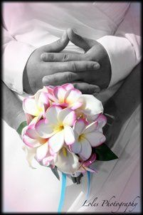 Tmx 1340910100042 Weddingceremonyflowerbouquet1 Fuquay Varina wedding officiant