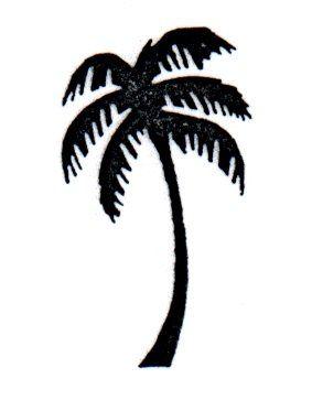 palmtreeimage