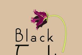 Black Tulip Event Flowers