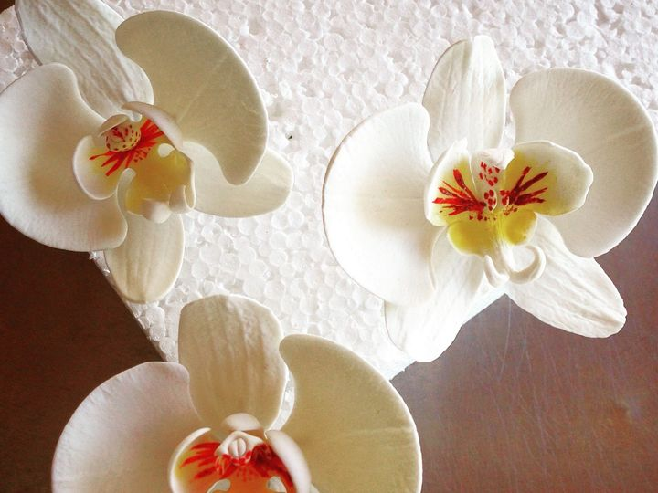 Tmx 1432003927739 Sugar Phalaenopsis Orchids 2 Seattle wedding cake
