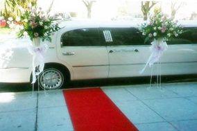 Austin Cobalt Limousines