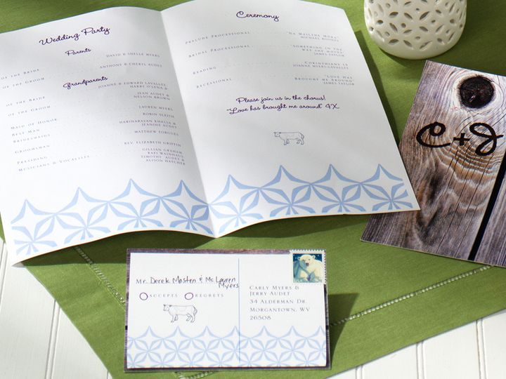 rustic weddingnavyvioletlimegreen4