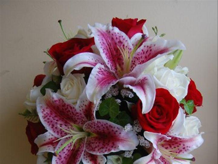 Tmx 1225461603234 249 Geneseo wedding florist