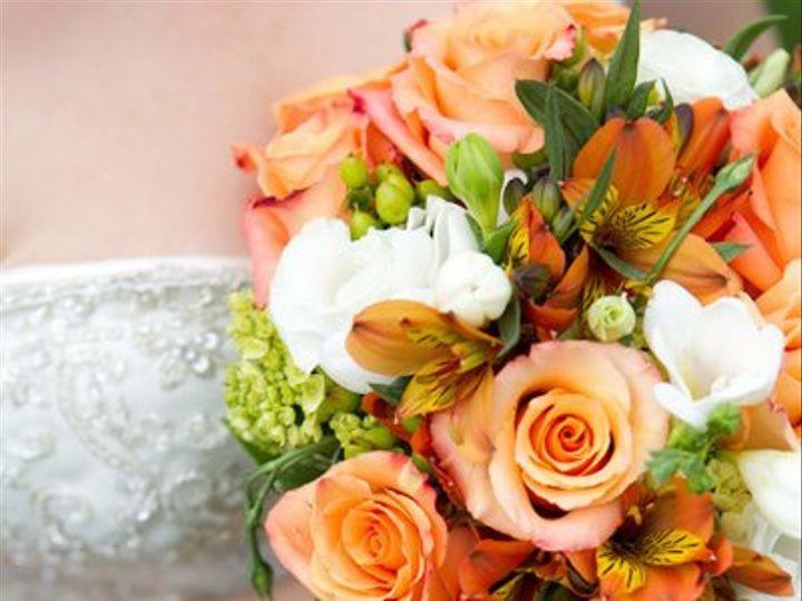 Tmx 1294849002097 50701563196d0977d9c8b Geneseo wedding florist