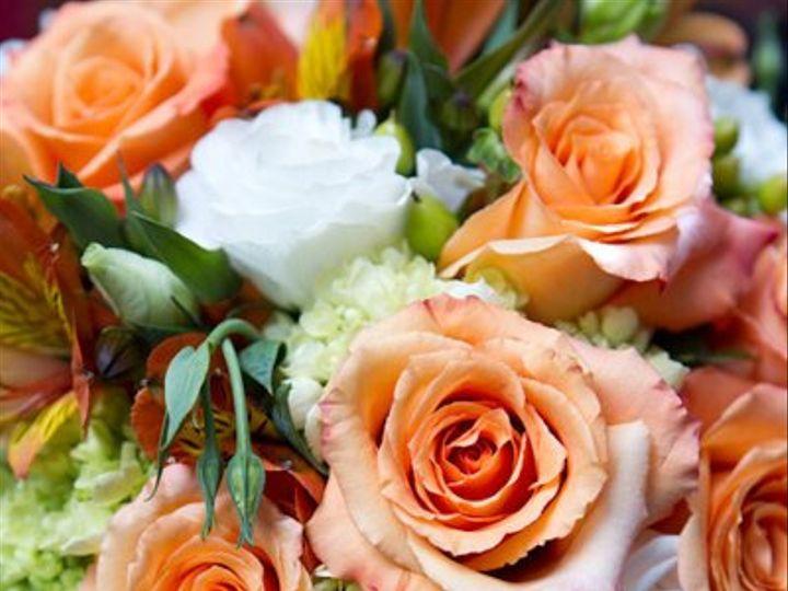 Tmx 1294849010597 5070762046f0e2d86050b Geneseo wedding florist