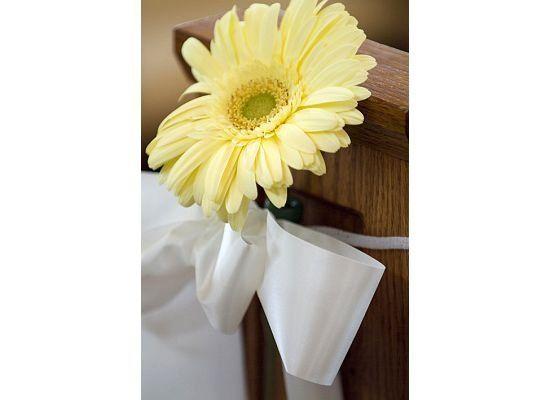 Tmx 1294849012987 6 Geneseo wedding florist