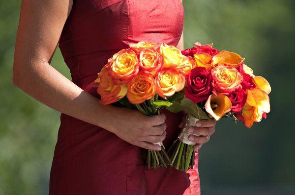 Tmx 1294849436128 SipraJan128 Geneseo wedding florist