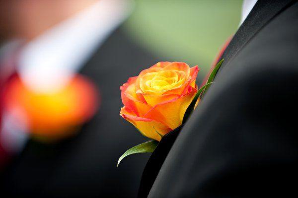 Tmx 1294849455081 SipraJan210 Geneseo wedding florist