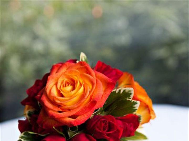 Tmx 1294849488409 SipraJan297 Geneseo wedding florist