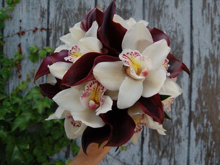 Tmx 1349270706524 DSC1830 Geneseo wedding florist