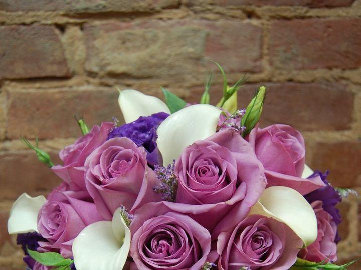 Tmx 1349270731871 DSC1854 Geneseo wedding florist