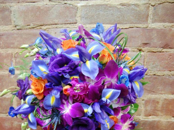 Tmx 1349270754973 DSC1865 Geneseo wedding florist
