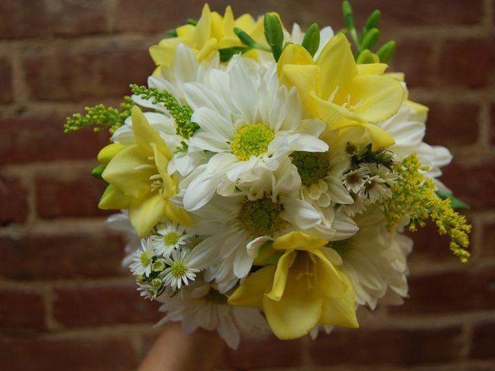Tmx 1349270932313 DSC1995 Geneseo wedding florist