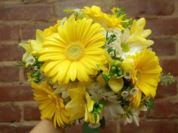Tmx 1349270959104 DSC1998 Geneseo wedding florist