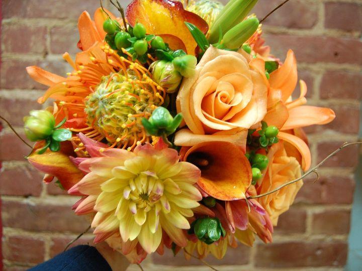 Tmx 1349271112106 DSC2033 Geneseo wedding florist